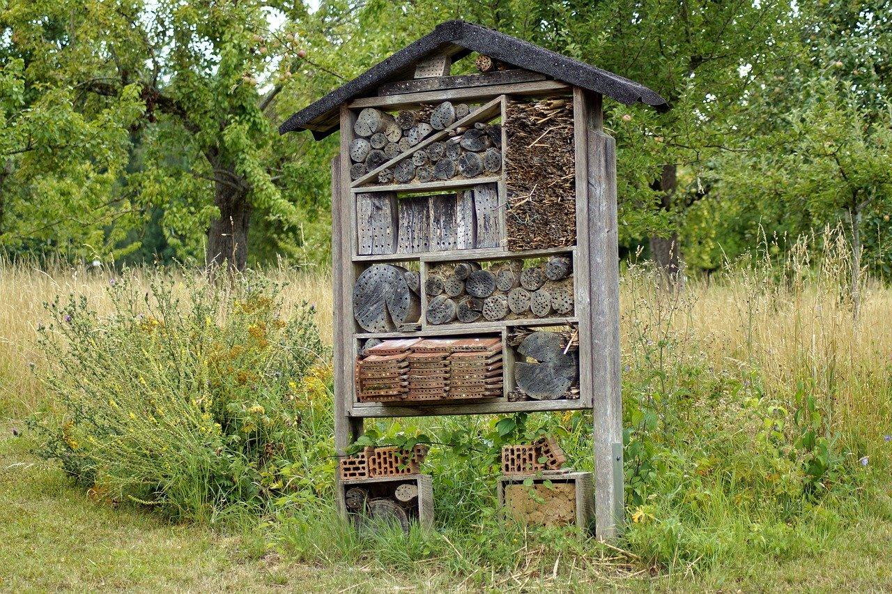Tipps zum Selberbauen eines Insektenhotels